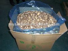 Organic planting base,Shiitake Mushroom Extract