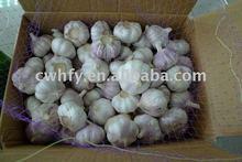 red garlic