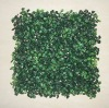 boxwood wall boxwood foliage Artificial boxwood mat