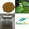 Top Quality Black Cohosh Rhizome Extract