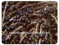Natural Acai Berry Extract 10:1
