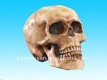 hotsale resin halloween skull