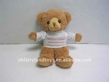 Small teddy bears with T-shirt