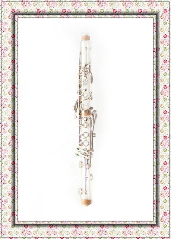 Âmbar clarinete HCL-307