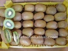 Fresh fruit;yellow kiwi fruit;green kiwi fruit
