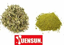 damiana leaf extract/damiana extract/damiana with good quality