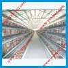 chicken shed egg chicken layer cage system