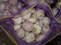 Supply Chinese Snow White Garlic -Bottom Price,High Quality!!