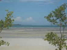 Zanzibar Beach Plot for Sale