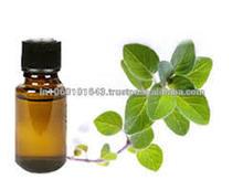 Oregano oil from India
