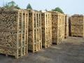 Kül, meşe, huş, kızılağaç odun paletler