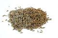 99.5% l'europe qualité Cumin graines pour algérie