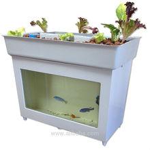 Mini Aquaponics Desktop unit