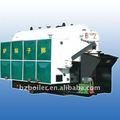 Dzl carbón caldera de vapor 10ton/h