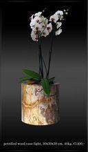 Unique vase of petrified wood
