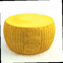 Plastic Parmiggiano Reggiano Cheese 2014