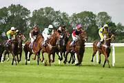 Racing Success : Horse Racing Backing System $48.90
