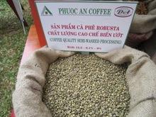 Vietnam Robusta Green Coffee Beans
