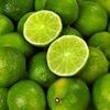 Fresh Lemon (Citrus Fruit)