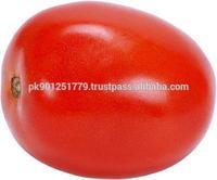 Superior quality bulk Roma tomatoes , Tomatoes wholesaler , Bulk price