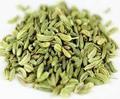 Europe qualité graines de fenouil pour l'algérie