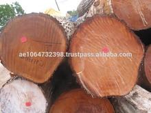 Mahogany Logs , Tali logs , Rosewood- Kosso square logs
