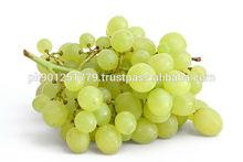 top quality sweet Fresh Green White Seedless Grapes , Sultanas Seedless Fresh Grape , Sweet Grapes