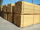 Wooden bar. Timber