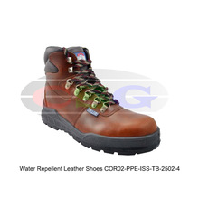 Water Repellent Leather Shoes ( COR02-PPE-ISS-TB-2502-4 )