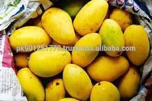 New crop Fresh mango Top quality bulk price , Sweet delicious fresh mango , Pakistan mango supplier ,more than 150 mango types