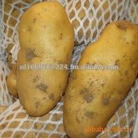 Fresh Potatoes, fresh vegetables