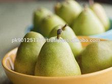 New arrival good taste fresh pear hot sale , Fresh Santa Maria Pear , New Crop High Quality Fresh Pear for Sale
