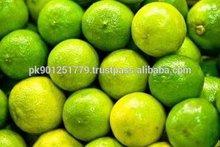 Fresh Lemon Supplier / Manufacture in Pakistan , Lemon Exporter in Pakistan , Lemons Eurekas