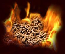 Pellets for fire