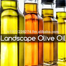 Landscape Olive Oil Trade 100 & 10000 L. Virgin Olive Oil