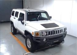 Hummer IB21116