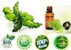 certified natural Fragrance Oil halal