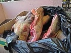 Halal Sheep and Lamb Carcass Frozen/Chilled
