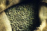 Green SHG Coffee