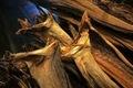 Noruega secos caldo de pescado, el bacalao, haithe, eglefino, secado de caldo de pescado cabezas.