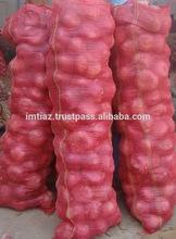 Jumbo Onion - Export Quality