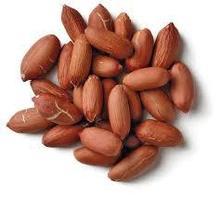 2014 Crop High Quality Large Type Peanut Kernels