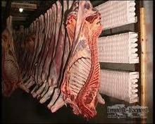 halal fresh frozen lamb meat