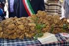 Fresh Italian White Truffle (Tuber Magnatum Pico)