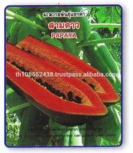 Papaya seed