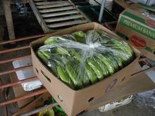 Fresh Banana cheap Price from Vietnam