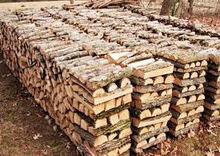 Quality Firewood on Pallets by 1m3+
