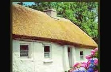eco-friendly Extrusion plastic synthetic thatch roof in India