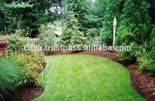 Baltic pine bark mulch for garden