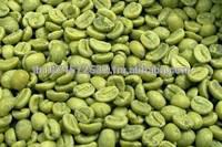 verde chicchi di caffè robusta miglior prezzo